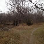 Wilderness Park Trail