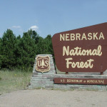Nebraska National Forest – Halsey